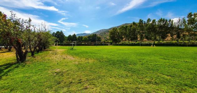 Terrain de sport herbe